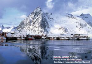 Fishery Norway