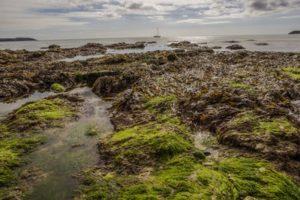 Normandiekysten