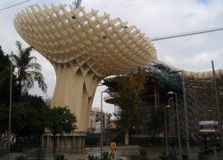 Parasols in Sevilla