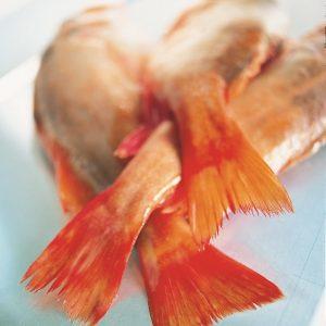 fisk,mindre